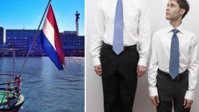 Photo of Dutch men are the tallest in the world