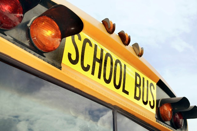 Driver accused of abduction after forgetting school girl in bus