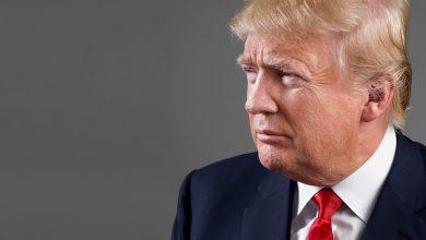 Photo of Trump 'credits' blonde hair to eating McDonald's fries