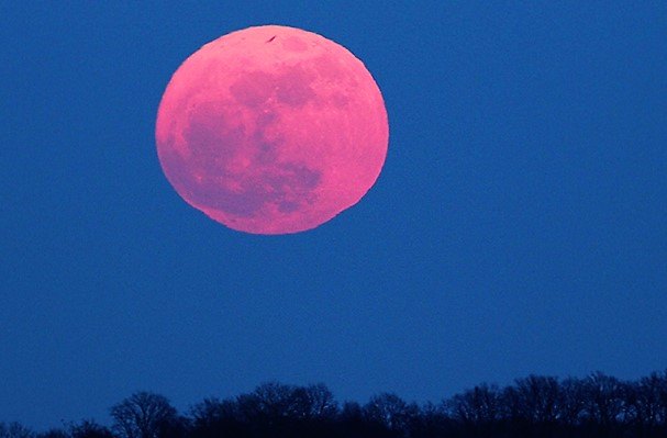 April's stunning 'Pink Moon' rises this week