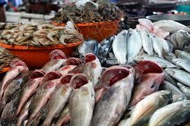Dubai gov't to monitor prices of goods during Ramadan