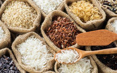 Mindanao farmers ship organic rice to UAE