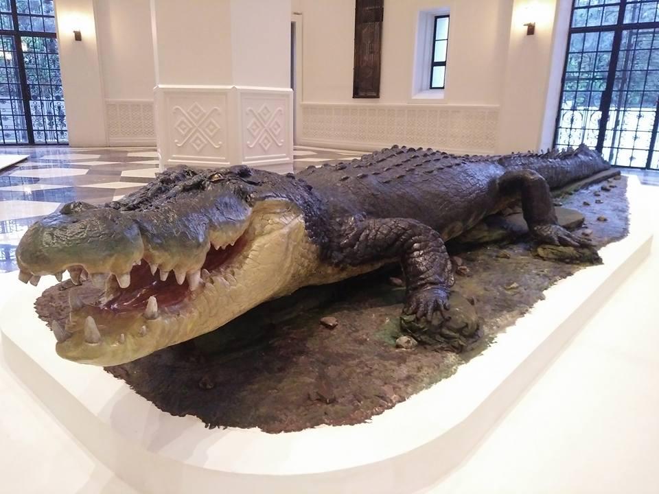 Santa Fe Natural History Museum