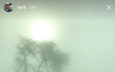 LOOK: Sheikh Hamdan shares snaps of foggy weather in the UAE