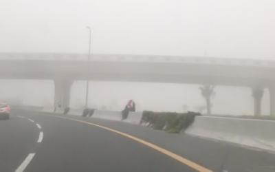 More Video of this morning FOGGY RUSH