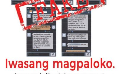 Pinoys told to be more cautious about fake POLO Facebook accounts, text scams