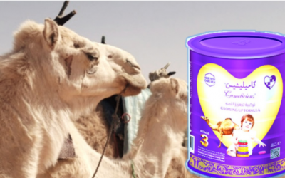 World's first camel milk formula launched in Dubai