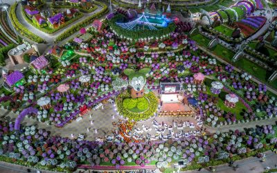 Record Breaking 18-Metre Floral Sculpture On Display