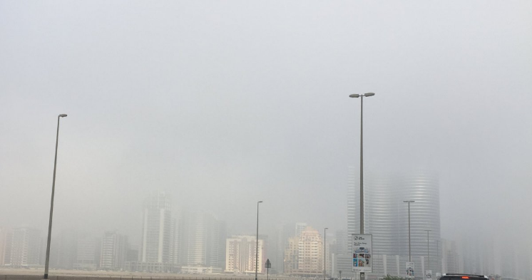 Fog continues to cover UAE today