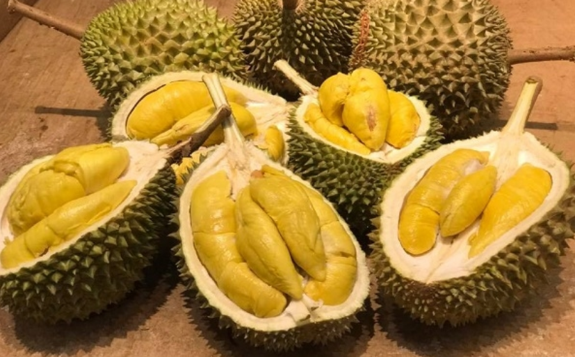 Durian odor prompts evacuation in Melbourne university