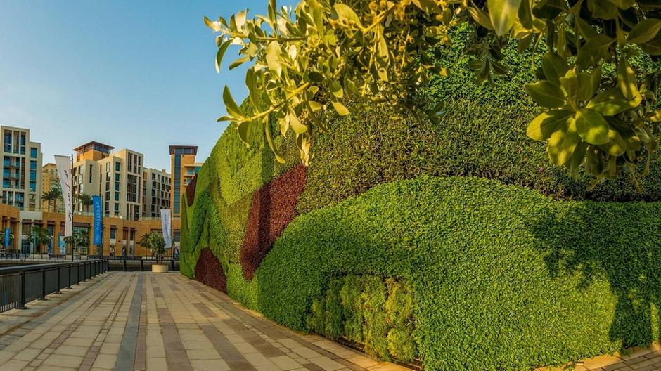 WATCH: Dubai Properties unveils region's largest living green wall