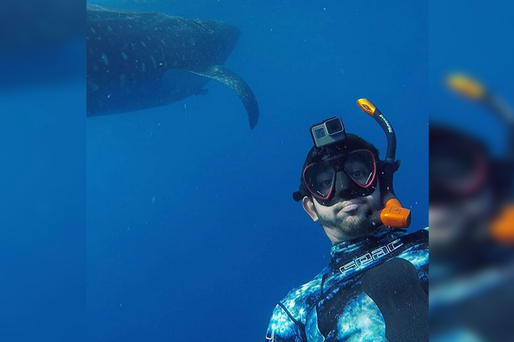WATCH: Sheikh Hamdan's underwater adventure with whale sharks