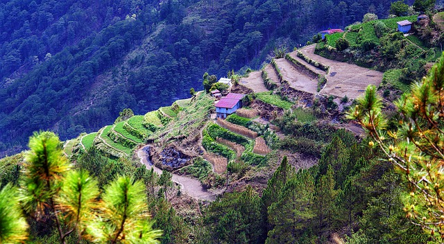 P80 million allotted for Banaue Rice Terraces rehab