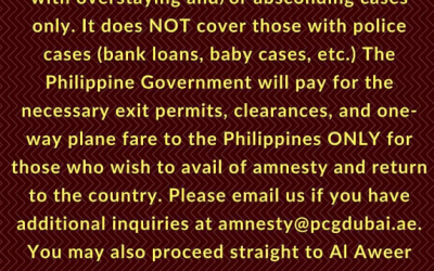 Philippine government to provide financial aid for OFWs seeking amnesty