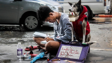 Photo of VIRAL: Teenager studies in the streets, accompanied by dog