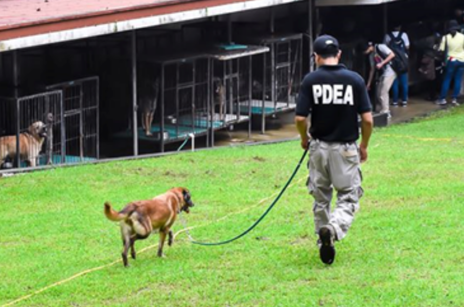 PDEA finds new homes for retired K9 dogs