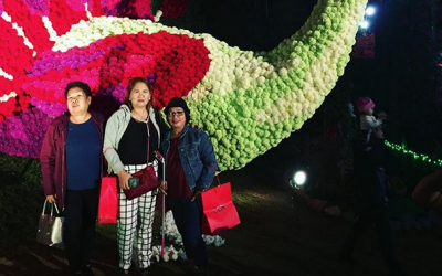 'Dubai Miracle Garden' rises in Baguio City this Christmas