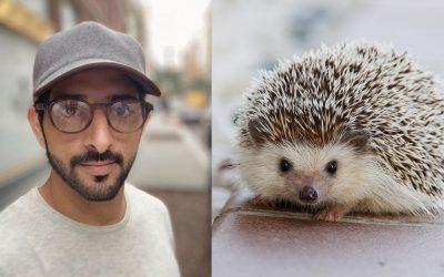 Dubai Crown Prince saves a hedgehog on his birthday