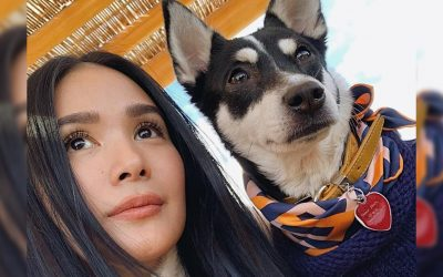 Heart Evangelista's adopted dog dons Hermes scarf worth thousands of pesos