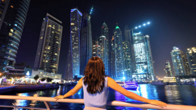 Photo of UAE women becoming career-oriented, want financial independence – survey