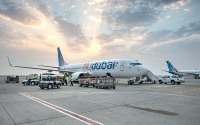 Saudi Arabia-bound aircraft returns to Dubai after bird strike