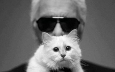 Karl Lagerfeld's cat to inherit Dh 720+ million