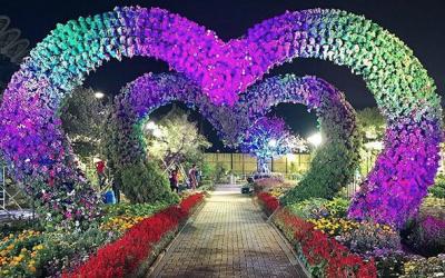 LOOK: Secret garden in Bulacan has thousands of instagrammable flowers from Dubai