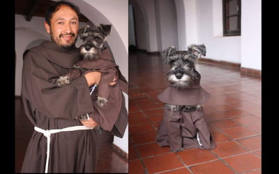Stray dog finds home in a monastery, lives like a friar dressed in a habit
