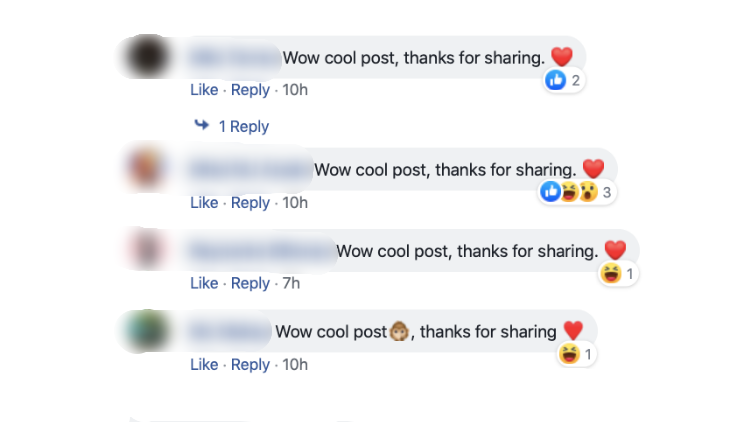 'Wow cool post, thanks for sharing' comments spread on Facebook
