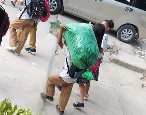 Student who carries sack full of grass from school inspires teachers, netizens
