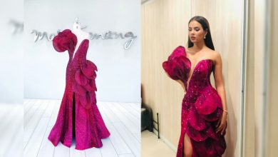 Photo of Catriona Gray's farewell walk gown inspired by 'waling-waling'