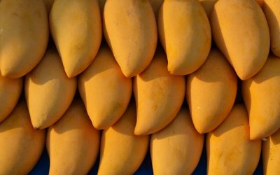 Pakistani mangoes hit the UAE markets