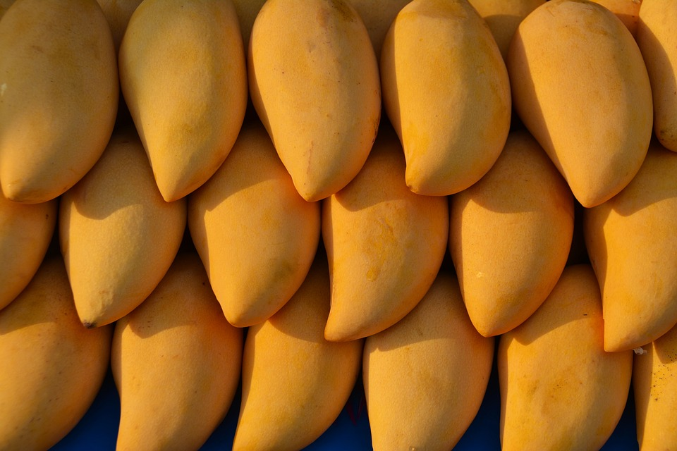 Pakistani mangoes hit the UAE markets