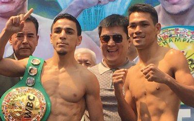 Filipino boxer Arthur Villanueva fails to win world title
