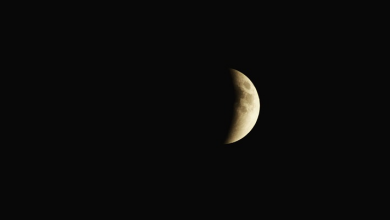 Photo of World witnesses last partial lunar eclipse for 2019