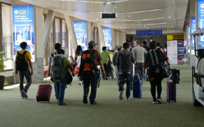 DOT reports over 4.1 million foreign arrivals for first half of 2019