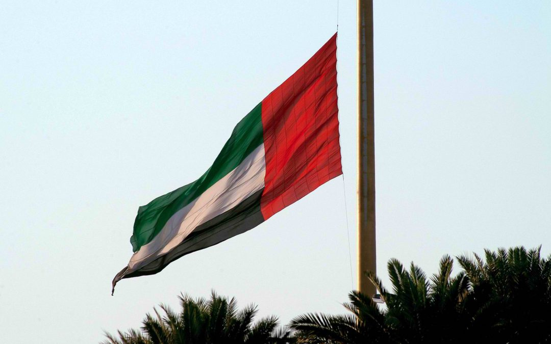 UAE Armed Forces announce martyrdom of 6 soldiers killed in military vehicles collision