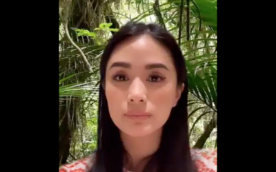 Heart Evangelista's reaction to Chiz's question of her travel expenses goes viral