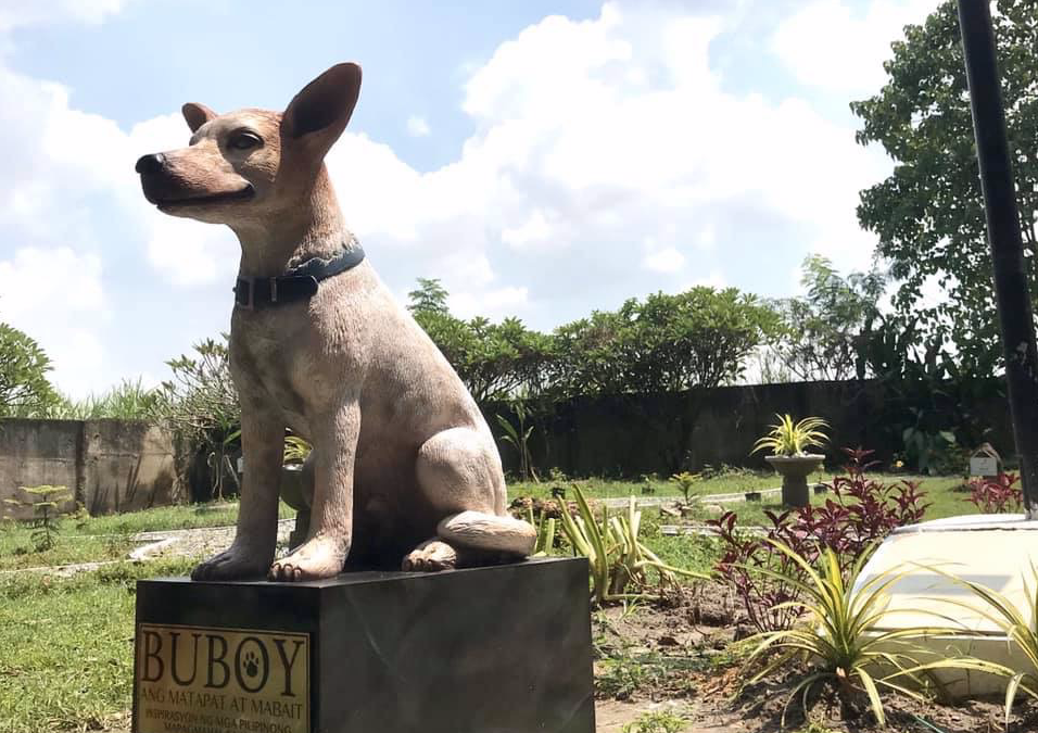 'Buboy' the dog who patiently waited for his master in Pampanga honored with a statue
