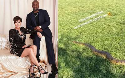 Watch: Massive snake found at Kim Kardashian's backyard