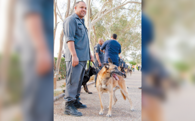 29 police dogs sold in auction for old age