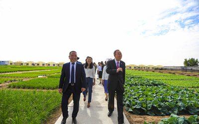 LOOK: Former UN Secretary-General Ban Ki-Moon visits WeMart farms