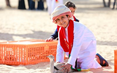 48 Houbara released in the wild to mark 48th UAE National Day