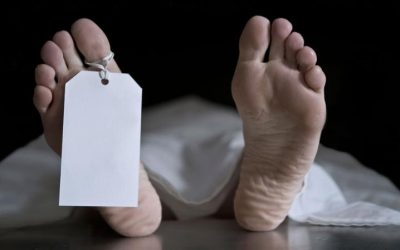 Housemaid in coma dies