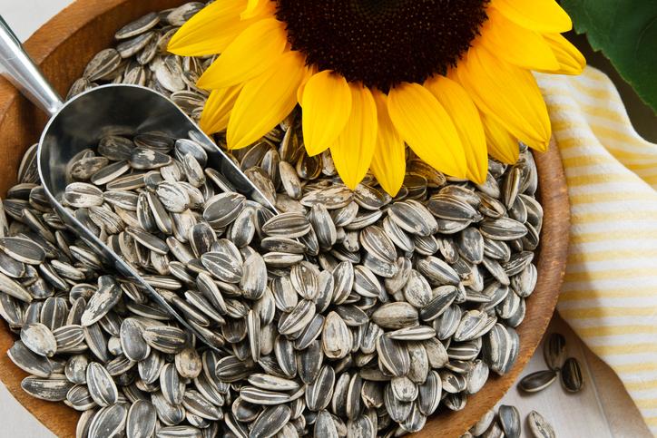 Eating sunflower seeds help reduce blood pressure: study