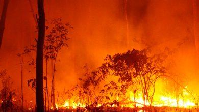 Photo of PH Embassy in New Zealand advises Filipinos on smoke from Australia's bushfires