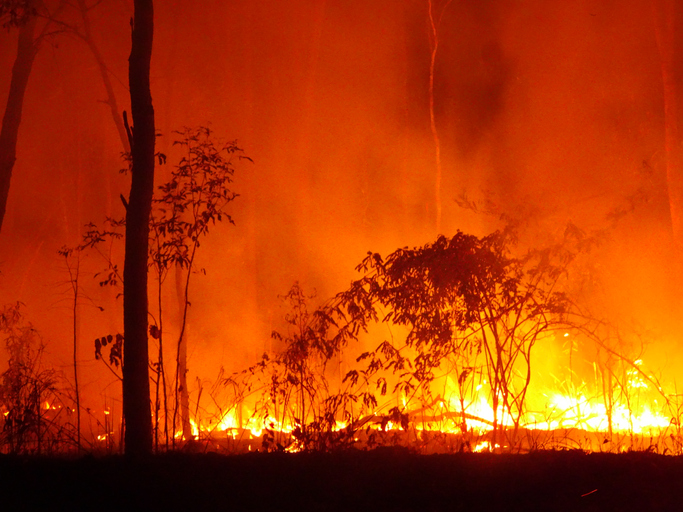 PH Embassy in New Zealand advises Filipinos on smoke from Australia's bushfires