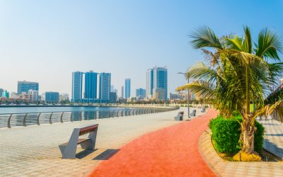 Ajman postpones, reduces government fees for local community, business sector amid COVID-19