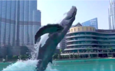 CGI video of whale in Dubai Mall trends on social media