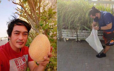 Dubai-based Filipino resident shows off home garden